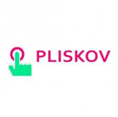 Оформить займ в МФО Pliskov Москва