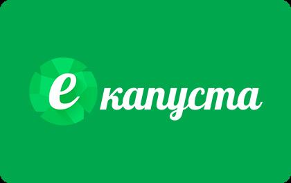 Оформить займ в МФО еКапуста Кашин