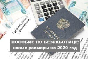Размер пособия по безработице в 2020 году