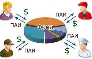 Паевой инвестиционный фонд - что это такое?